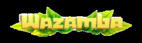 01 Wazamba – Sports
